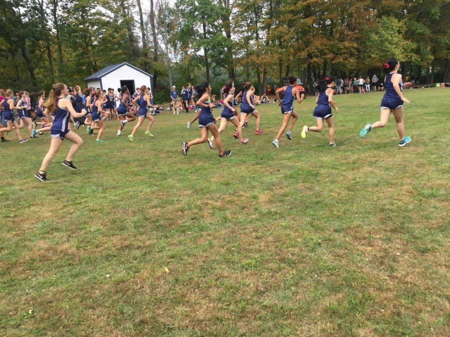Girls cross country going the distance