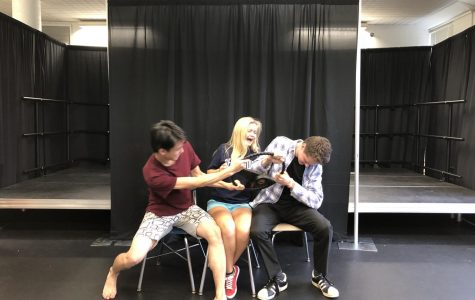 A preview of the Fall Play, Anon(ymous)