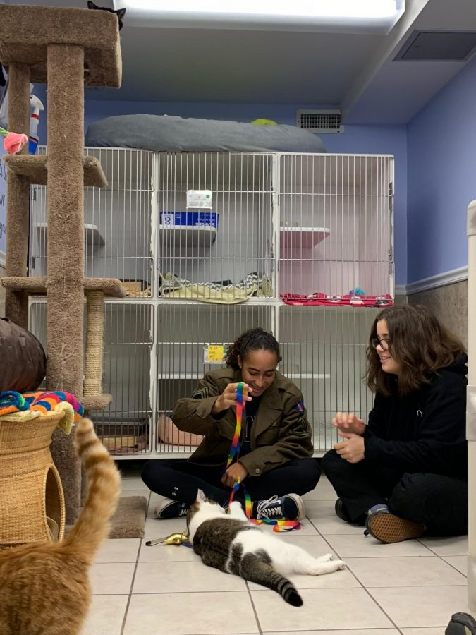 Students Give Back at The Little Guild