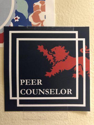 Peer Counselor Training 2019