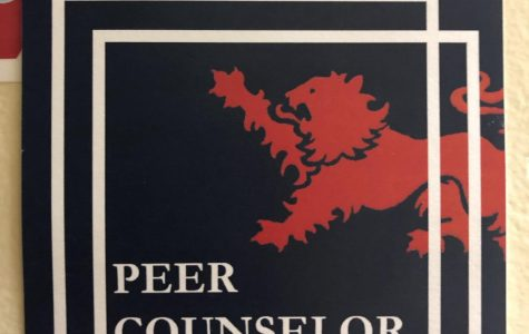 Peer Counselor Training 2019